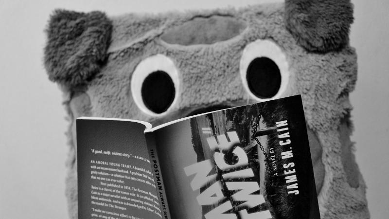 Rupert is reading The Postman Always Rings Twice