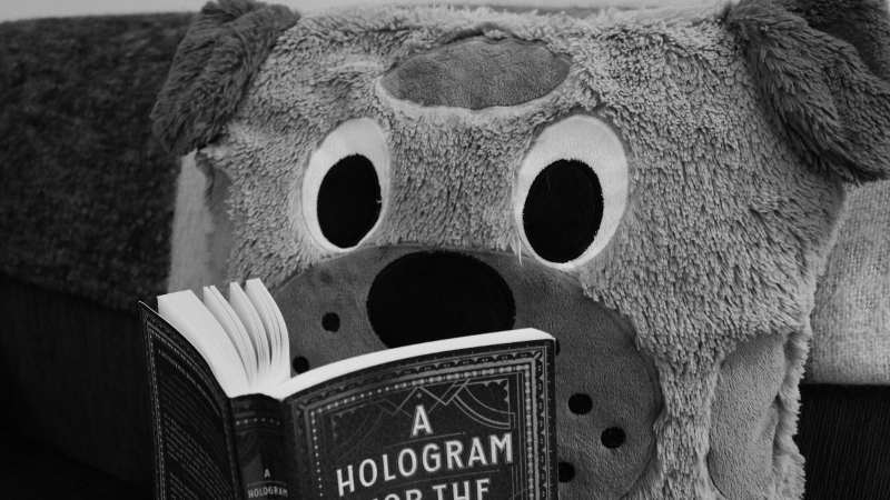 Rupert is reading 'A Hologram For The King'.